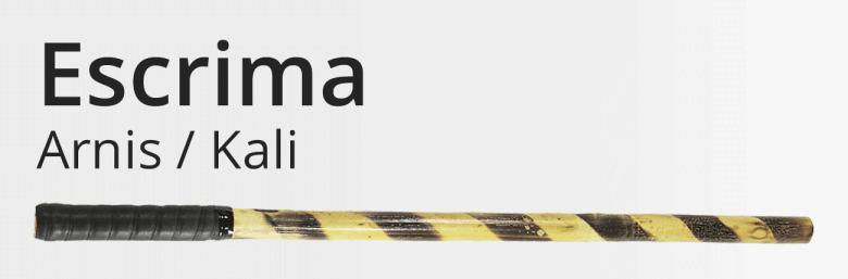 Martial Arts Weapon Training - Krishna Sports Academy for Taekwondo